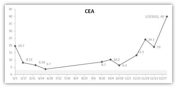 20130103 CEA Level