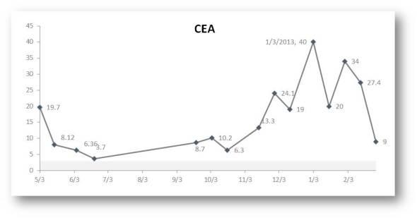 20130228 CEA Update