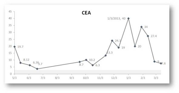 20130314 CEA Update